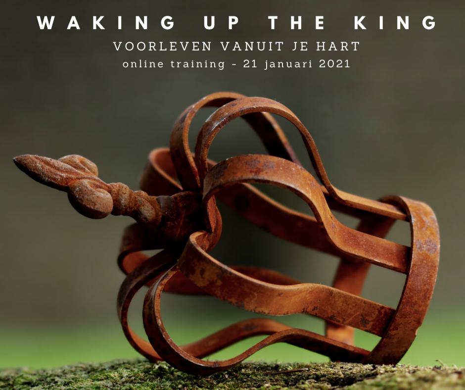 waking up the king voorleven workshop praktijkvader jeroen de jong